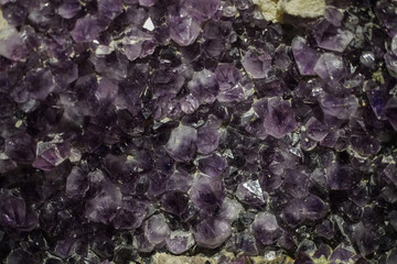 Amethyst cluster rough crystals close up in low light background