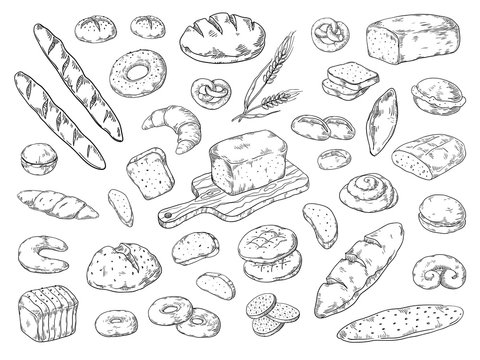 Hand drawn bakery. Doodle bread sketch, wheat flour types of bread, vintage graphic template baking. Vector bakery bagels and cookies