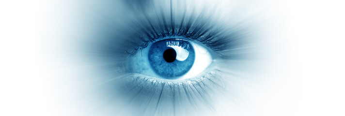 Blue eye of a woman. Eye in motion. Wide banner with a white background.