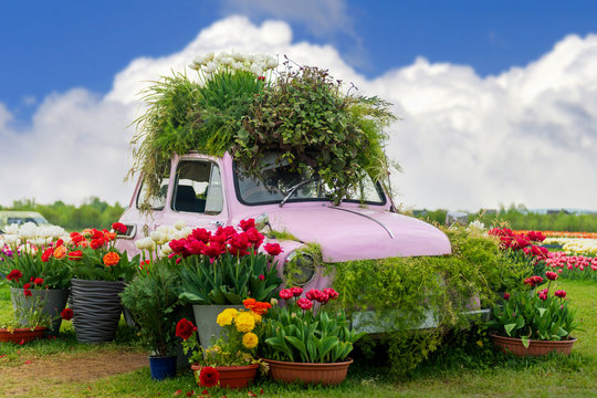 Flowers composition with pink retro car