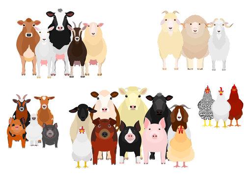 livestock group by purpose