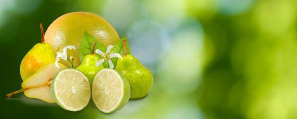 Fototapete - image of oranges, lemons, pears on a green background