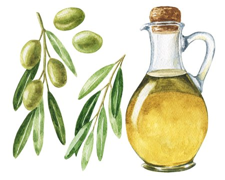 Hand drawn watercolor olive oil set with leaves and brunches isolated on white background. Realistic food illustration.