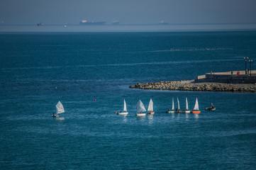 Garden Poster Water Motor sports The group of sailing boats sail at the Black sea.