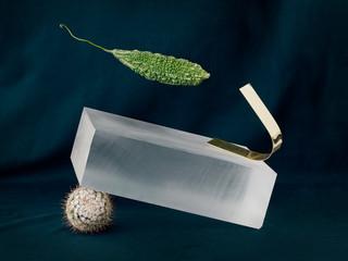 Glass box, cucumber and cactus