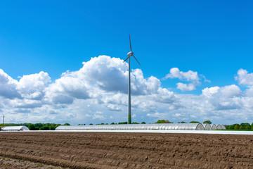 Landwirtschaft und Windkraft mit Spargelfeld und Gewächshäusern. Standort: Deutschland, Nordrhein-Westfalen, Heiden
