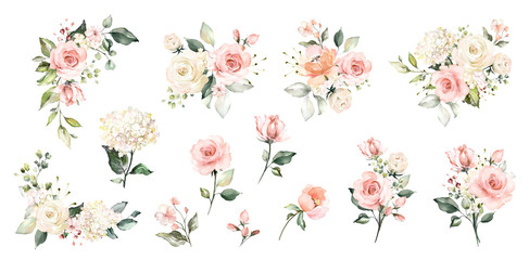 Set watercolor arrangements with roses. collection garden pink flowers, leaves, branches, Botanic  illustration isolated on white background. Wall mural