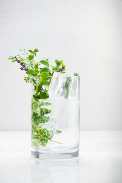 A large glass of sparkling water with large ice and fresh herbs.
