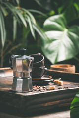 Coffee and tropical leaves background, close up