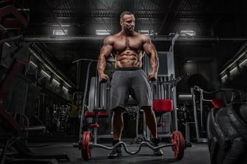 Brutal strong athletic men pumping up muscles workout bodybuilding concept background - muscular bodybuilder handsome men doing exercises in gym