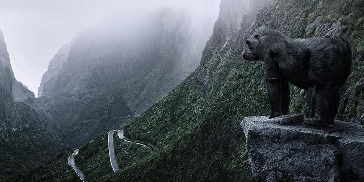 Gorillas Wildnis