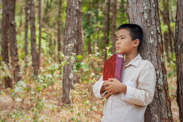 Asian boy is sitting reading a book on a timber in the forest.