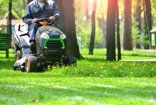 Green grass treeming with lawn mower