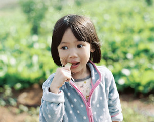Cute and beautiful Asian children eat in the natural farm.by 120 film
