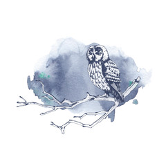 Owl sitting on a tree branch hand drawn sketch with watercolor background. Wildlife illustration. Forest bird.