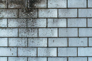 Wall Mural - Weathered sand-lime brick wall background