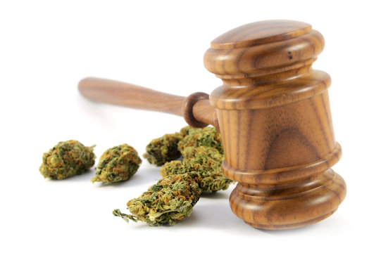 Legalized Weed Laws