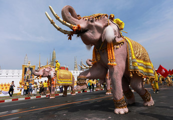 Ten elephants from Ayutthaya camp march in procession near the Grand Palace to celebrate Thai King Maha Vajiralongkorn's coronation, in Bangkok, Thailand