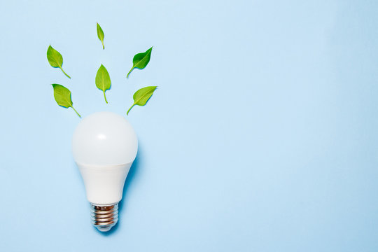 Led lamp with leaves on a blue background. Green energy efficiency concept. Top view.