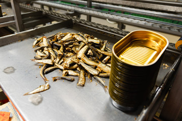 A pile of small smoked fish on a metal table. Laying fish in cans.