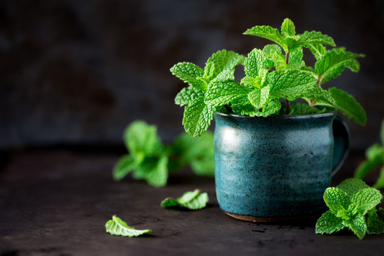Fresh sprigs of mint in a rustic ceramic cup against dark background
