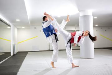 Exchange of high kicks during training of taekwondo Wall mural