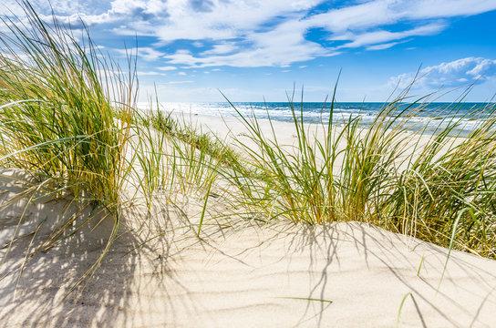 Pusta dzika plaża koło Mrzeżyna nad Bałtykiem w Polsce