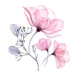 Watercolor transparent floral arrangement of roses bellflower buds leaves branches in pastel pink grey blue violet purple color vintage ornament x-ray, wedding design, stationery print, frame