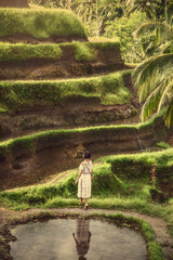 A girl in a white dress on the rice terraces of Tegallalang. Bali trip. Tropical landscape. Travel.