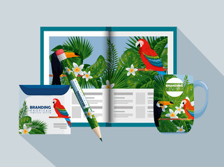 business brochure with tropical style and cd envelope