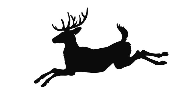 realistic black silhouette of a leaping forest deer on a white background,  for decoration of a reindeer team for Christmas and New Year