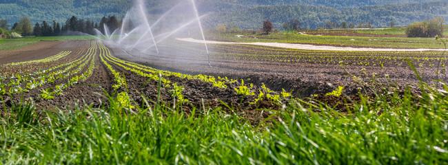 Bewässerung in der Landwirtschaft Fotoväggar