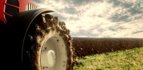 Tractor cultivating field. Agriculture and machinery. Wall mural
