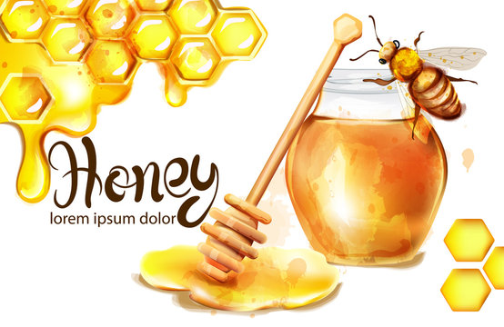 Honeycomb banner watercolor illustration. sunflower and bees Vector templates