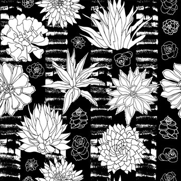 Elegant vector black and white succulent plants seamless pattern in a botanical style with textured stripe background.