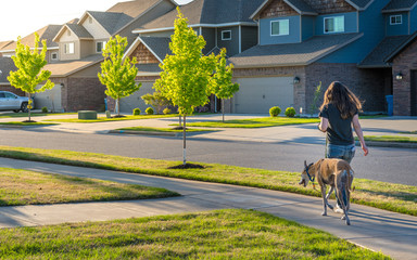 Young woman walking dog in modern residential houses neighborhood street in Bentonville, Northwest Arkansas, sunny flare day, fast growing city  lifestyle