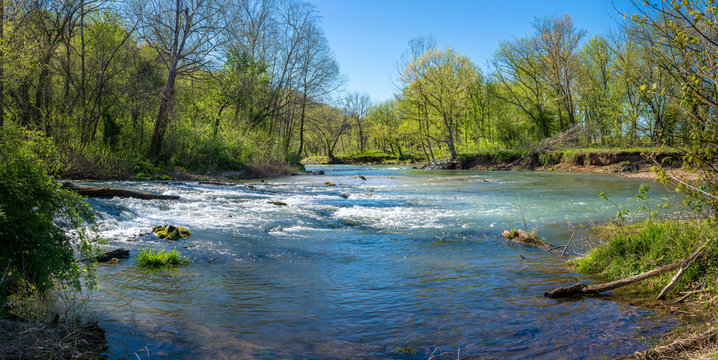 Panoramic view of Heron bird phishing, river in the forest, Lake Park Bella Vista City in Northwest Arkansas, crystal clear water creek