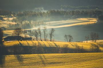 Rural landscape with fog and sunrise light