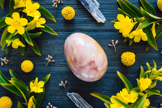 Purple Stone Egg with Blue Kyanite and Flowering Yellow Trumpet Vine on Blue Stained Wood