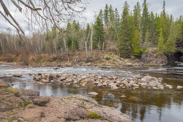 Wall Mural - Temperance River State Park
