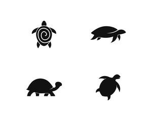 Turtle icon illustration design template