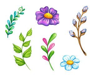 Spring flowers and leafs illustration, set of colorful, floral hand drawn clip art elements, isolated on white background.