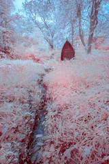 Garden in infrared light cornwall england uk