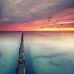 Freiheit am Meer