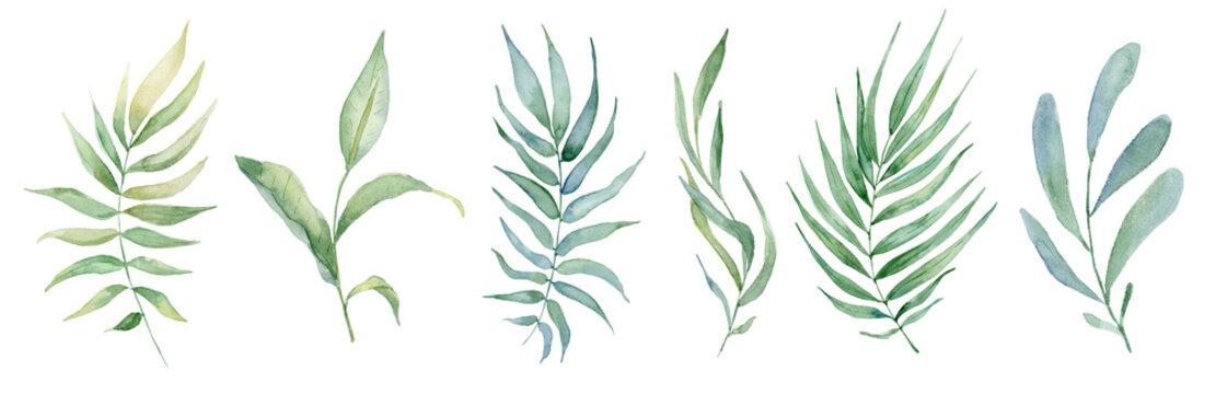 watercolor green leaves set