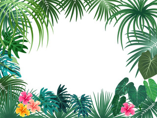 Vector tropical jungle frame with palm trees and leaves on white background