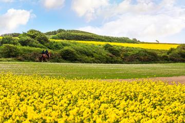Papiers peints Melon couple à cheval dans un magnifique paysage printanier