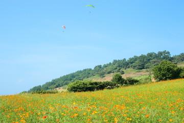 제주 서우봉 해변의 아름다운 풍경이다. Fotobehang