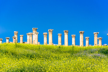 Wall Mural - Ancient and roman ruins of Jerash (Gerasa), Jordan.