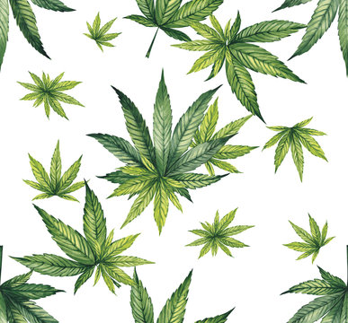 Watercolor pattern of cannabis leaves on a white background. Fine print for fabric.